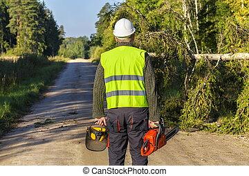 Forestry worker near broken and fallen spruce on the road