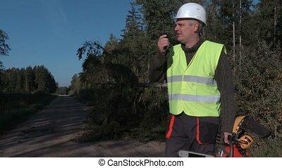 Forestry worker on walkie talkie near broken and fallen spruce on the road