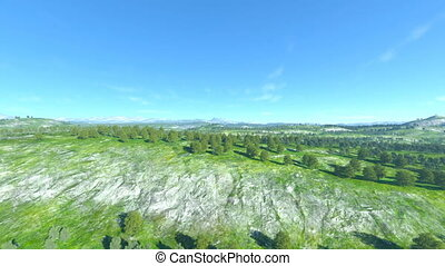 3D CG rendering of forests