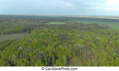 forests and fields of Belarus aerial photography.