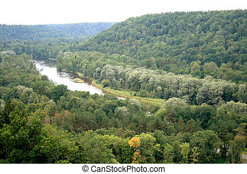 Forests and river Gauja - Forests and river Gauja on a...