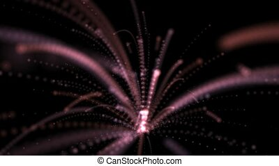 Forever Firework Abstract Animation - A abstract firework...