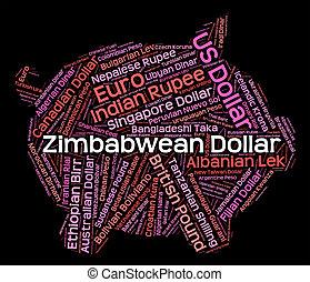 forex, dollaro, commercio, zimbabwean, moneta, mostra