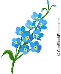 Forget me not flower - vector forget me not flower