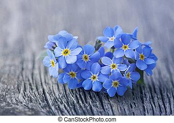 forgetmenot, λουλούδια