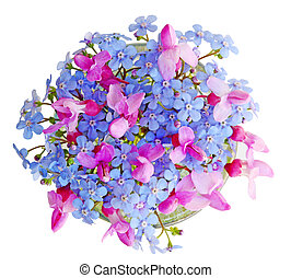 Forgetmenot and Redbud