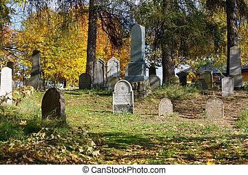 forgotten and unkempt Jewish cemetery