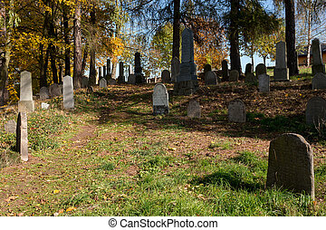 forgotten and unkempt Jewish cemetery with the strangers