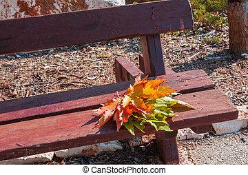 Forgotten bouquet of autumn leaves