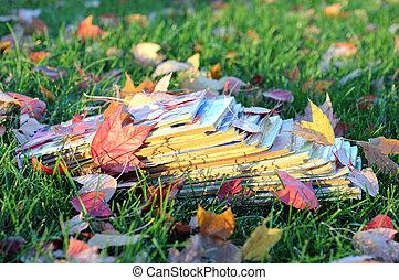 Forgotten old magazine on grass in autumn season