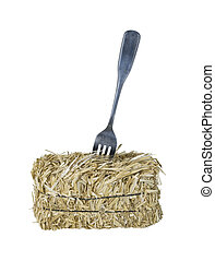 Fork in a Bale of Hay