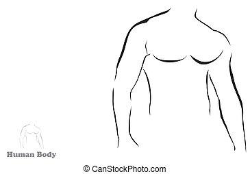 formál, ábra, testépítő