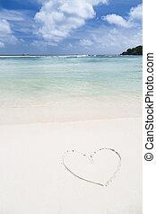 forma corazón, en, un, playa blanca