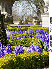 Formal Garden - formal Garden in spring with beautiful...