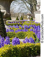 Formal Garden - formal Garden in spring with beautiful...