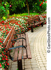 Formal garden - Garden with paved path, benches and blooming...