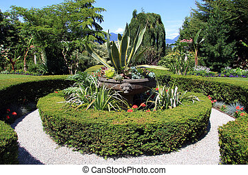 Formal garden - Stunning formal manicured hedge garden with...