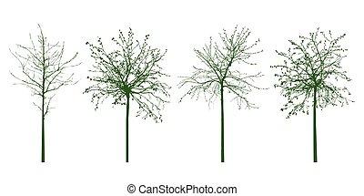 formas, de, verde, árboles., vector, illustration.