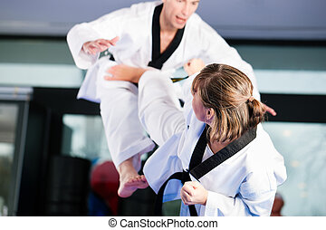 formation, arts, sport, gymnase, martial