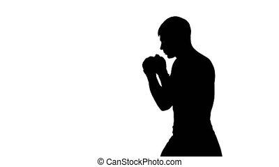 formation, boxeur, silhouette