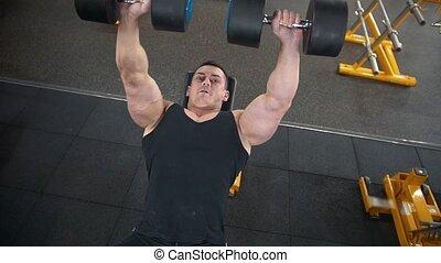 formation, dumbbells, gymnase, -, biceps, musculaire, jeune, glisseur, exécute, musculation, homme