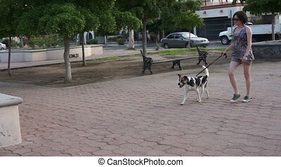 formation, femme, chien, elle