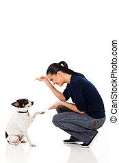 formation, femme, jeune, elle, chien