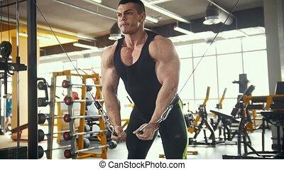 formation, sportif, gymnase, -, jeune, exécute, musculation, bras, homme