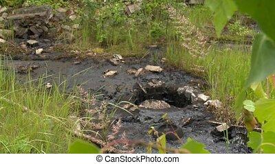 Former dump toxic waste. Europe. European Union. Toxic...