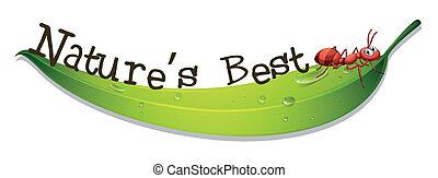 formica, nature's, foglia, meglio, etichetta
