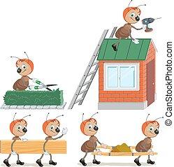 formica, set, lavoratore