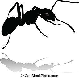 formica, uggia, vettore, silhouette