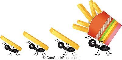 formiche, frigge, portante, francese