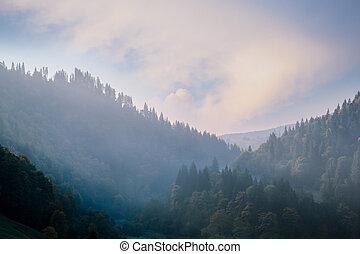 formiddag, ind, bjerge.