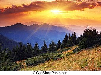 formiddag, ind, bjerge