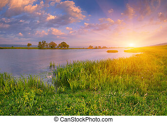 formiddag, landskab, nær, den, river., solopgang