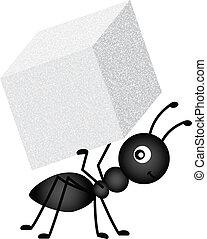 formiga, carregar, cubo açúcar