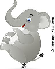 formiga, elefante