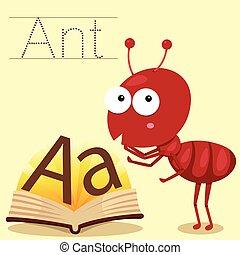 formiga, illustrator, vocabulário