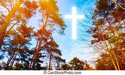 formułować, zakon, symbol, niebieski, krzyż