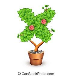 formulaire, arbre, isolé, pot., lettre, argile, x, fleurs