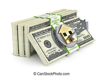 formulaire, argent, house., illustration, serrure, pile, 3d
