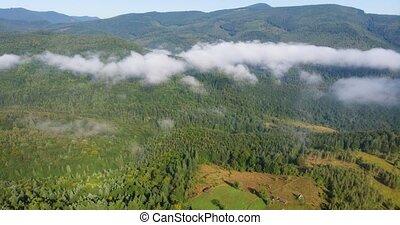 formulaire, sur, pentes, timelapse, montagne, boisé, nuages