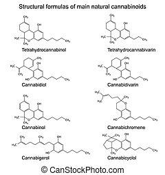 Chemical formulas of natural cannabinoids: tetrahydrocannabinol, cannabidiol, cannabinol, cannabigerol, tetrahydrocannabivarin, cannabidivarin, cannabichromene, cannabicyclol, 2d illustration, vector, eps 8