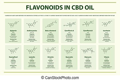 formules, huile, infographic, horizontal, cbd, flavonoid, structural