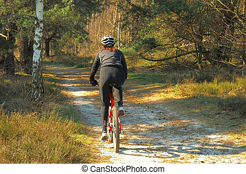 Forrest path with bicyclist, fitness, sport on autumn, fall ...