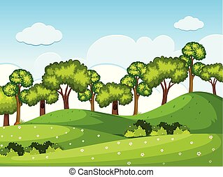 Forrest scene with trees on the hills