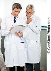 forscher, erklären, kollege