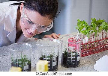 forscher, schauen, junger, weibliche