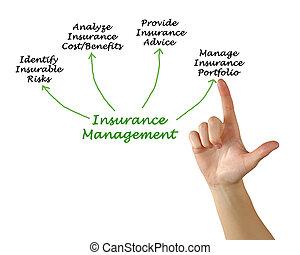 forsikring, ledelse